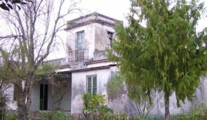 Museo Casa Blanca 